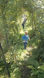 Linus in Joel and Alessias wonderful garden.